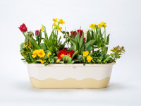 Flower box Mareta beige