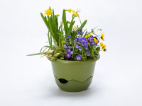 Flower pot Mareta green
