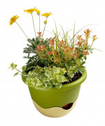 Flower pot Mareta green beige