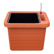 Large-volume planter Berberis Uno terracotta