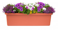 Large-volume planter Berberis Trio terracotta