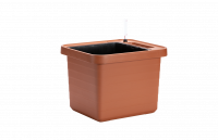 Flower box Berberis UNO terracotta