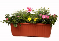 Flower box Siesta terracotta