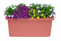 Large-volume planter Berberis Duo terracotta