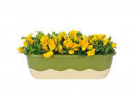 Flower box Mareta green beige